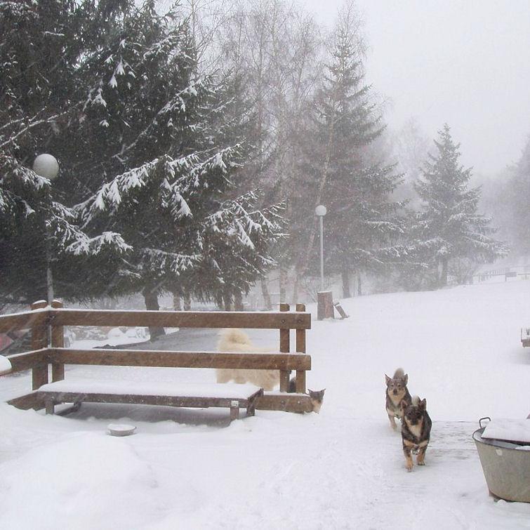 Hummer et Emppu febr 2013