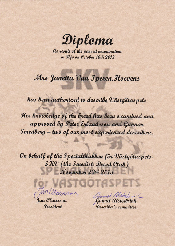 Diplome JG Descripteur Marron 2013