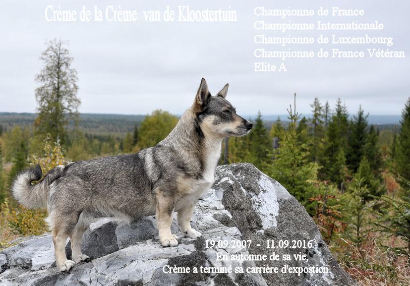 creme-14-09-2016-frans