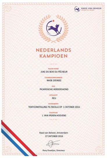 juke-nl-champ